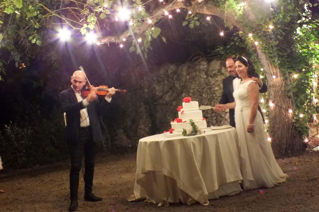 Violino musica taglio torta nuziale