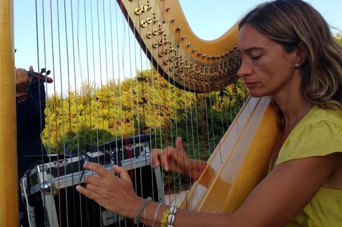 Musica arpa cerimonia civile brindisi