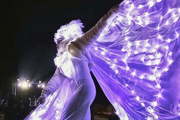 Spettacolo farfalle luminose
